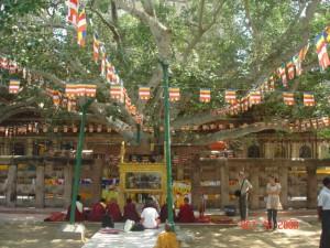 5 preoti budisti